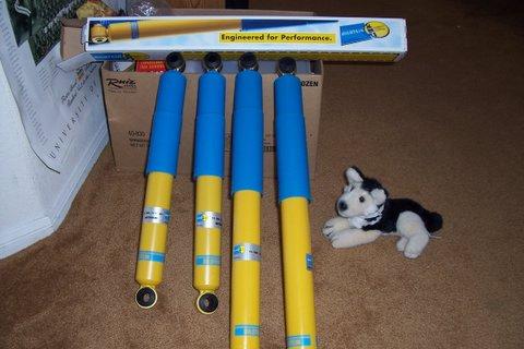 My new shocks ready to install...