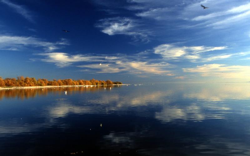 salton_sea_reflection-resized